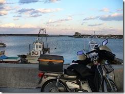 香良洲漁港を背景にカブ