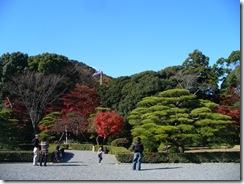 紅と緑のコントラストが美しい庭園